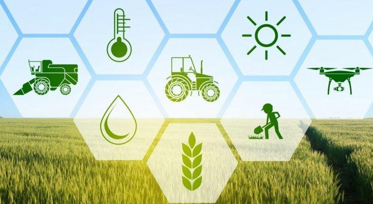 Agriculture Industry - cover
